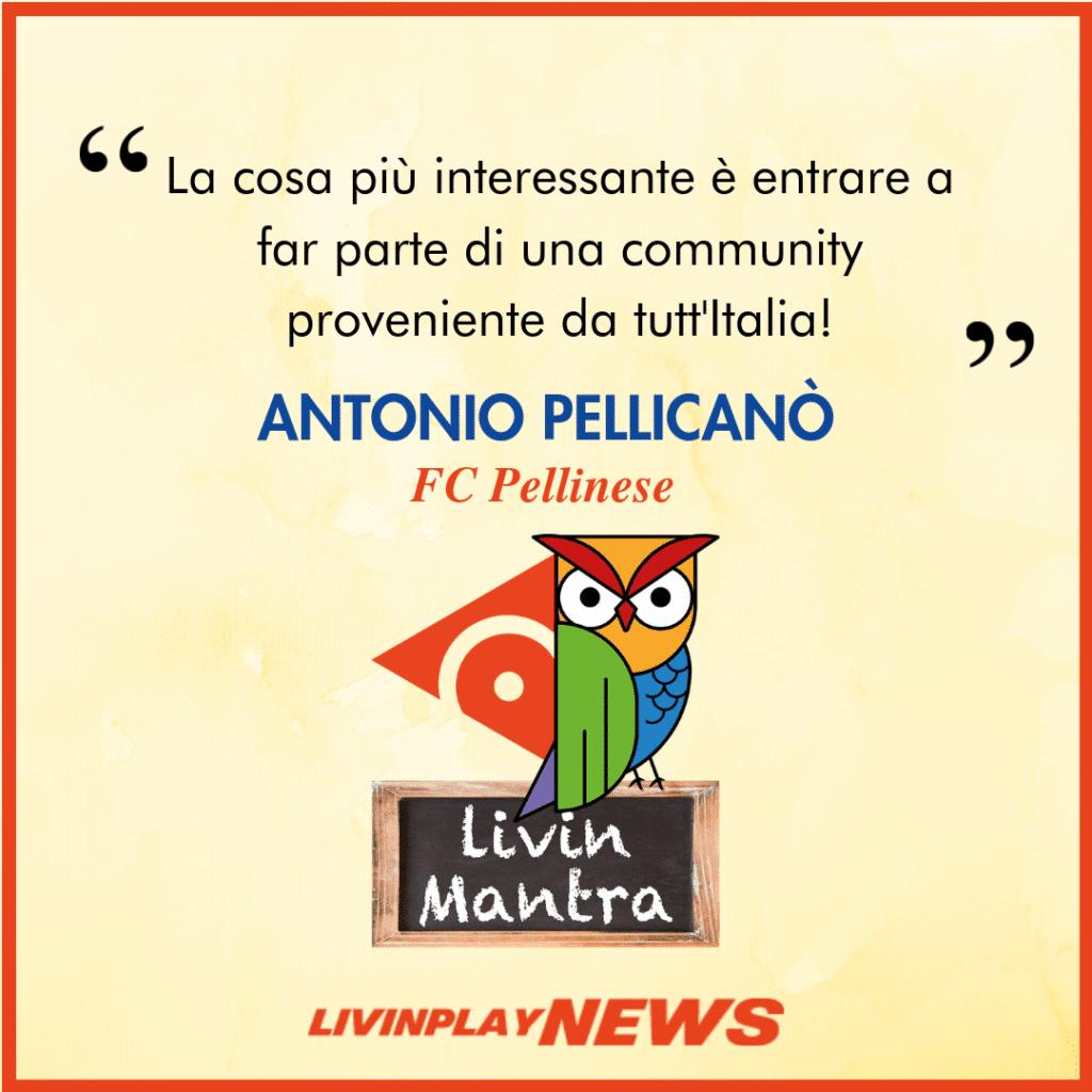 Antonio Pellicanò - Citazione 2019